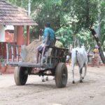 Ashram workers arriving